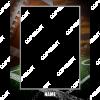 rpl_classic_football_8x10_chromaluxe_easel_panel_v