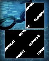 rpl_classic_swim_8x10_mm_v