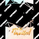Invitation005_BluePeach_5x7_V