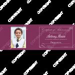 PressBooklet_Classic_Violet_5pt5x17_h_2