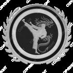 Emblem_Silver_Black_martialarts