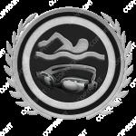 Emblem_Silver_Black_swim
