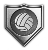 Silver_Shield_Emblem_volleyball