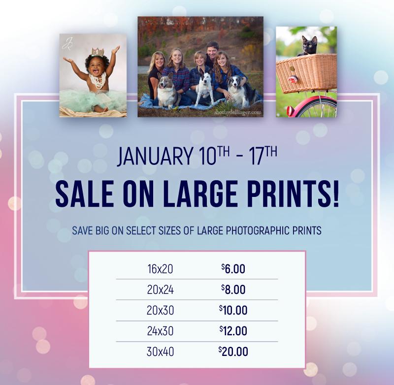 large_print_sale_800x800_01_05_17